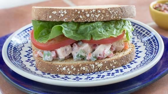 Tex-Mex Fajita Chicken Salad Sandwich Recipe Image